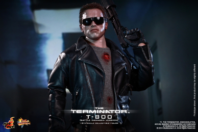 Hot_Toys_-_The_Terminator_-_T800_(Battle_Damaged_Version)_Collectible_Figure_PR9