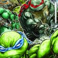 Teenage Mutant Ninja Turtles Universe To Launch In August