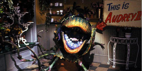 The Most Charismatic Man-Eating Plant in the Galaxy is Back this Halloween as 'Little Shop of Horrors' Returns to the Big Screen Two Days Only, October 29 and 31 Special […]