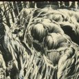 If you are a true Bernie Wrightson fan, you will love IDW's Bernie Wrightson Artifact Edition!