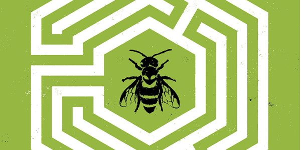 There's a new book from Berger Books at Dark Horse, and it's The Seeds. Issue #1 starts off with bees. There are bees, tough little things, wild feral bees. And […]
