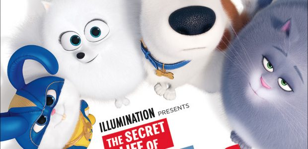 The Secret Life Of Pets 2 From Uphe On Digital August 13 And 4k