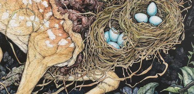 Discover Lauren Marx's First Art Collection Presented by Dark Horse Books Fungus blooms and dies, bones weather, and moths form halos around dismembered animals in this darkly exquisite collection from […]