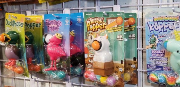 Wild Hog shows off some new fun games and toys! Hog Wild took to the floor of Toy Fair with some fun indoor and outdoor toys. I especially loved the […]